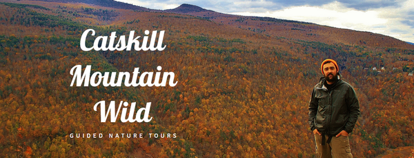 Catskill Mountain Wild Guided hikes and Canoe trips